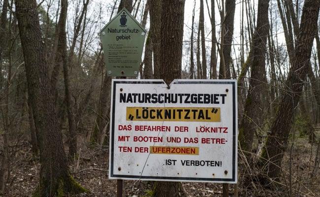 De lagartos al agua, las preocupaciones medioambientales golpean la planta de Tesla en Alemania